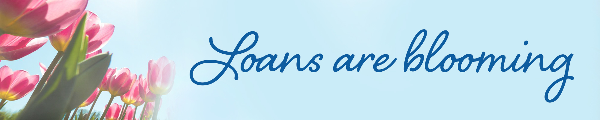 Loans are Blooming